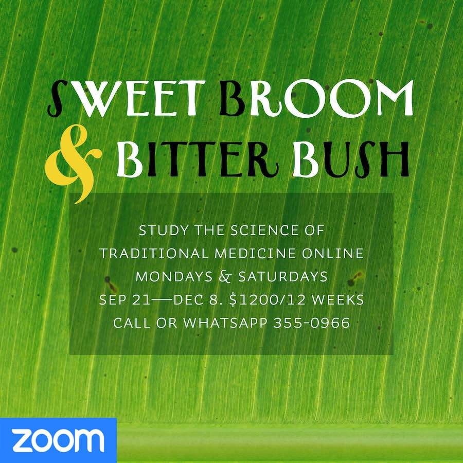 Sweet Broom and Bitter Bush: the science of traditional medicine