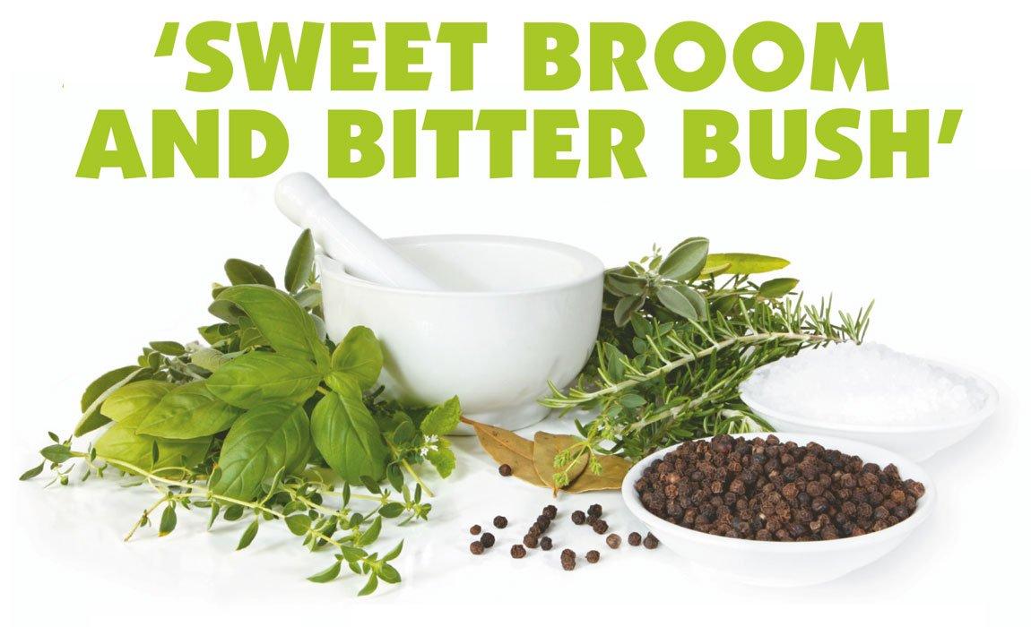 Sweet Broom and Bitter Bush Green Market