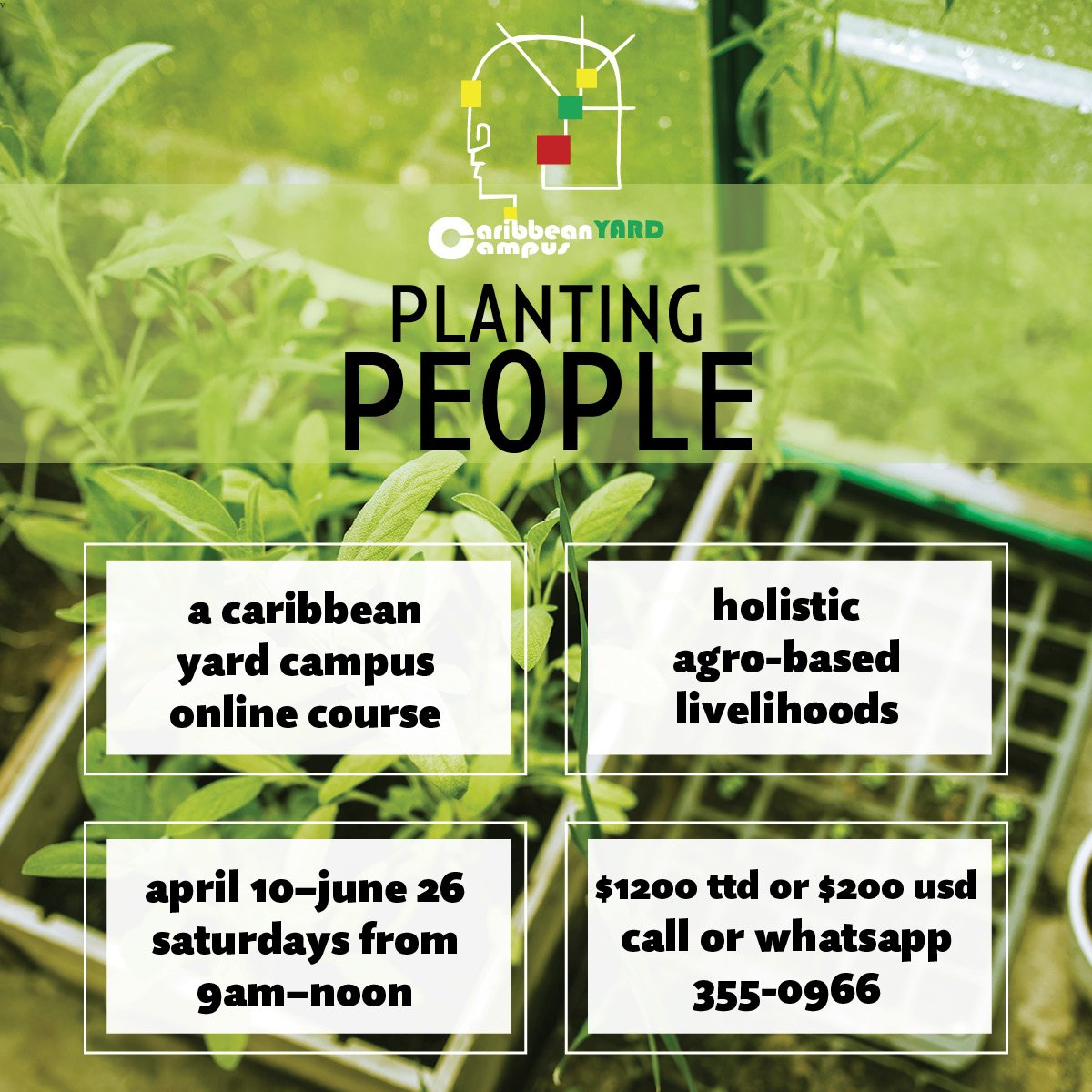 Planting People: Holistic Agro-Based Livelihoods